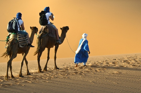 Camel caravan going through the sand dunes in the Sahara Desert, Morocco. Stock Photo - 10694015