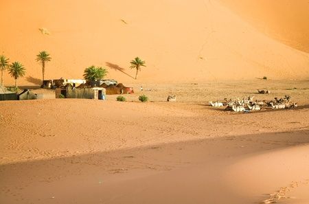 Moroccan desert dune background photo