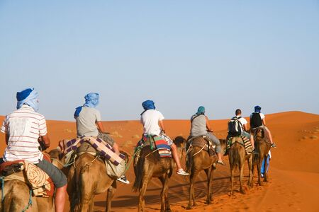 Camel caravan going through the sand dunes in the Sahara Desert, Morocco. Stock Photo - 10700152