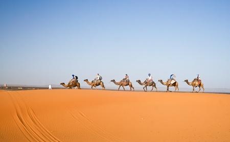 desierto del sahara: Caravana de camellos atravesando las dunas de arena en el desierto del Sahara, Marruecos.