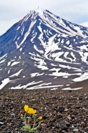 vulcan koryakskiy on the kamchatka Stock Photo - 11032793
