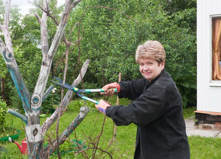 off cuts: Woman cuts off the bushes in the garden
