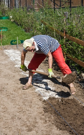seed bed: Spring works in the garden