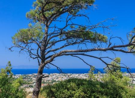 sporades: Mediterranean coast. Resort Ialyssos. Rhodes Island. Greece