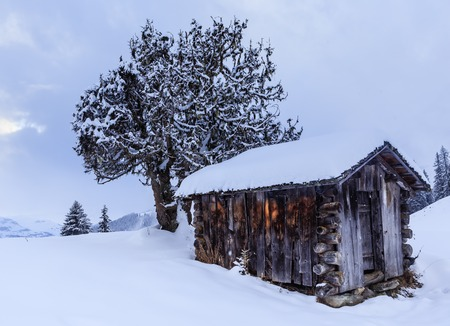 Shed In The Mountains Ski Resort Laax Switzerland