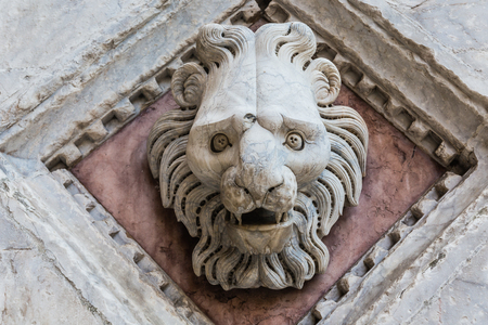 stone lion: Head of  lion Carved in Marble on the Facade of the Baptistery of Siena Cathedral, Italy Stock Photo