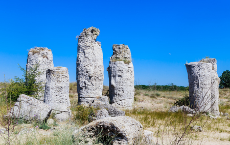The natural phenomenon Pobiti Kamani, known as The Stone Forest and Dikilitash ,natural landmark in a sacred  place near Varna, Bulgaria