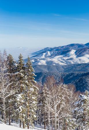View from Tserkovka mountain în the Altai Mountains in winter.  Resort Belokurikha, Altai, Russia