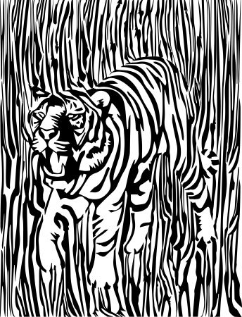 black and white tiger Vector