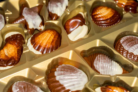 Belgian chocolate candies Seashells. Best quality