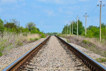 Railway tracks stretching into the distance in the middle of a green forest