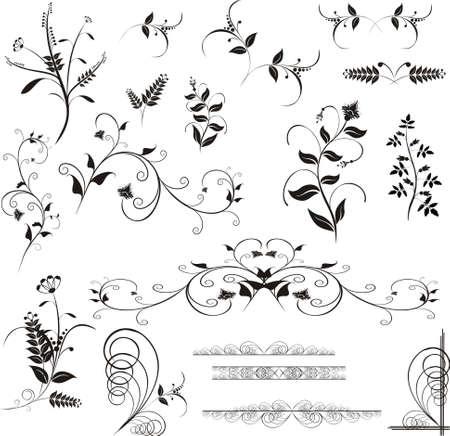 ellements: Floral design ellements Stock Photo