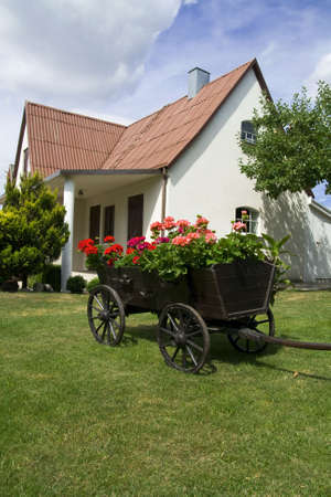 waggon: Yards decoration. A waggon with wooden wheels and with flowers in bloom