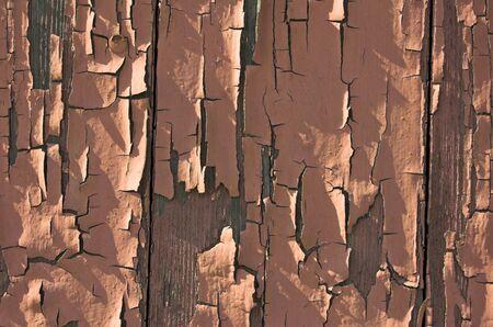 sidelight: Rusty wooden door.
