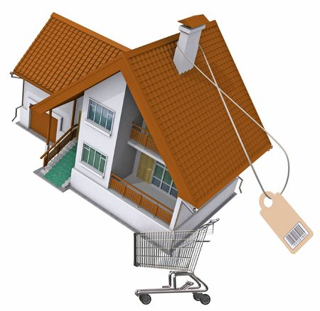 Residental house in a shopping cart. Image with clipping path.