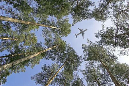 The plane flies by over forest. photo