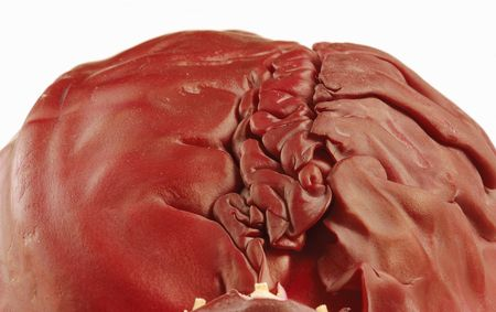 crinkles: The Head of red cabbage. Stock Photo