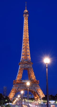 Eiffel Tower in Champ de Mars in the night in Paris, France