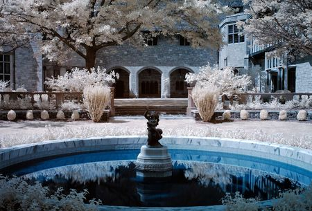An infrared image of a well manicured garden