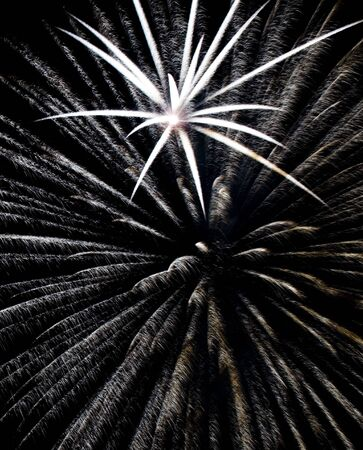 multitude: An artistic display of fireworks with a multitude of colors