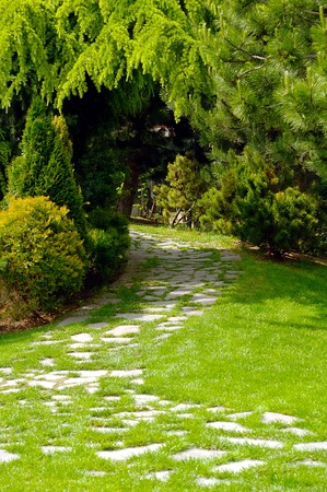 Garden with paved path and luxuriant vegetation Stock Photo - 7039918