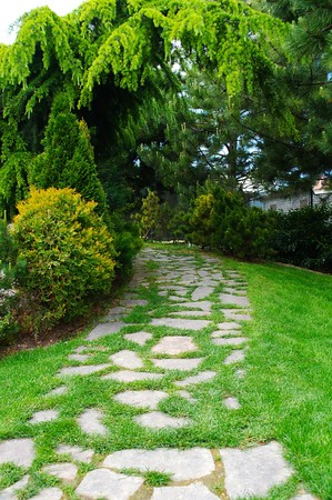 Garden with paved path and luxuriant vegetation Stock Photo