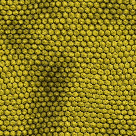 Reptile skin texture photo