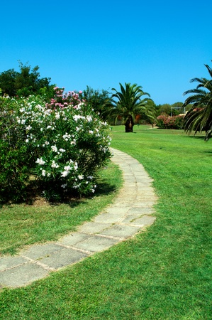 Stone walk way in a beautiful garden Stock Photo - 8589721