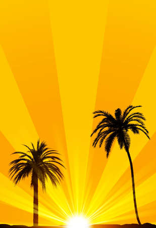 Summer tropical background photo