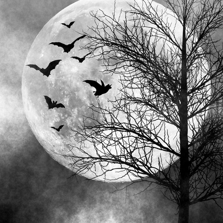 Halloween background. Bats flying in the night with a full moon in the background Stock Photo