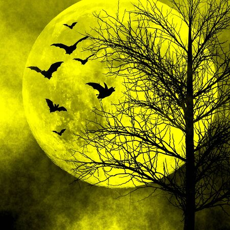 Spooky night background. Halloween background. photo