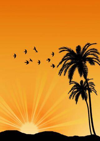 Tropical sunrise photo