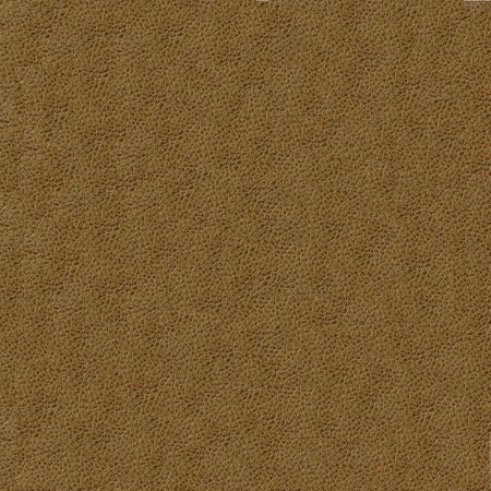 Natural qualitative brown leather texture Stock Photo - 10355578