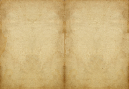 Old vintage paper, antique book pages  Paper texture and background  Archivio Fotografico