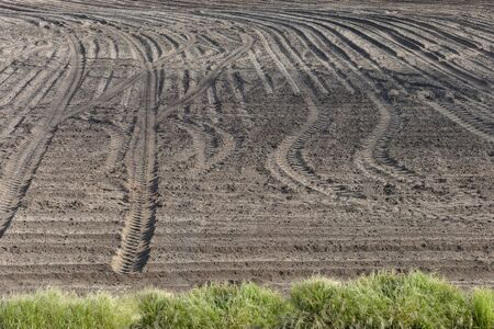 Plowed tractor field. Traces of tires on the ground. Sowing