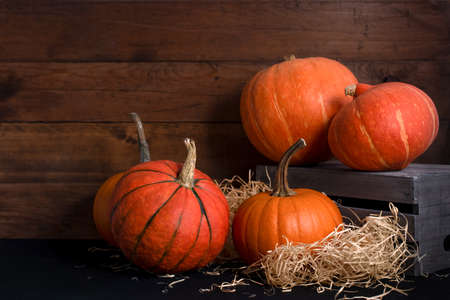 Different kinds of ripe orange pumpkins on a wooden background with copy space. Autumn harvest before Halloween. Stock Photo