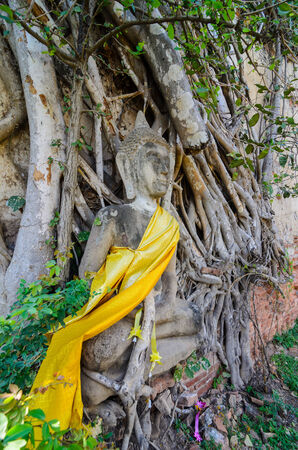 Temple of Ayuthaya, Thailand, photo