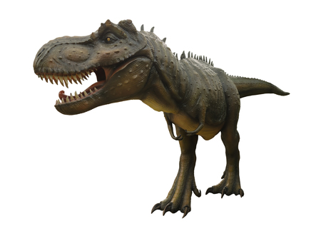 t  rex: Aggressive T Rex model of dinosaurs on white background.