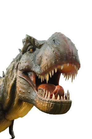 Aggressive T Rex dinosaurs on white background. Stock Photo