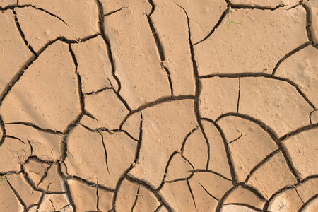 dirtied: Dry cracked earth.
