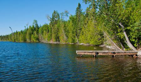 Dock on Shoreline Trees Converge into Distance photo