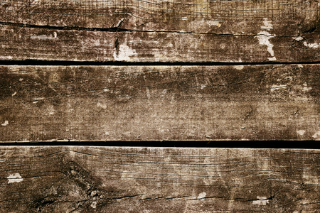 Rustic Wooden Plank Texture