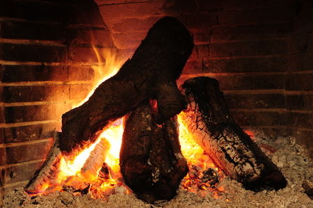 logs: burning logs in fireplace