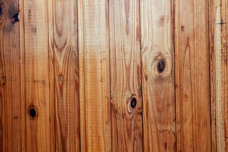 consisting: Background consisting of wooden slats. Dry tree, fir, pine. Stock Photo