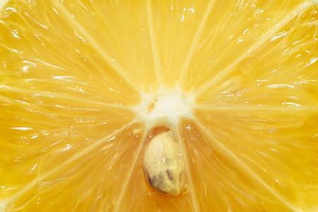 Macro photo lemon cut. Close up lemon.