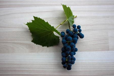biological vineyard: Blue grapes on beige floor