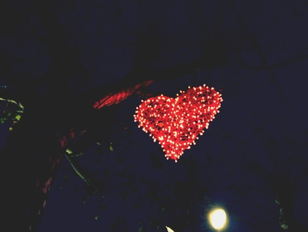 december: Light heart on tree in December Stock Photo