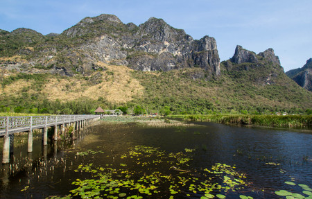 Wooden Bridge in lotus lake at Khao Sam Roi Yot National Park, Thailand