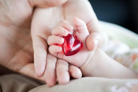 corazon en la mano: manos de los padres y del beb�