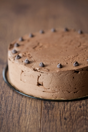 Triple chocolate cake Stock Photo - 14193079